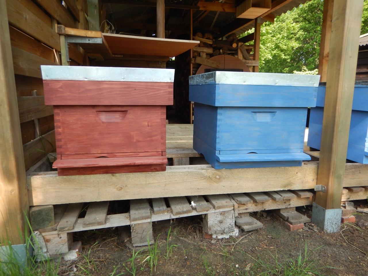 Beekeeping: I'm ready!
