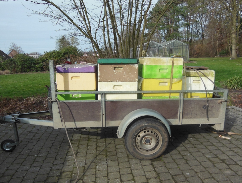 New old hives