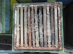 Very old, neglected comb